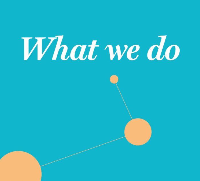 What we do PDF